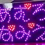 安室奈美惠 LED螢光版 接機粉絲版 電池款~ 優惠價含運 A款 20*30cm