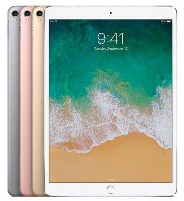 Apple 直購平價Apple 12.9 吋 iPad Pro Wi-Fi 256GB