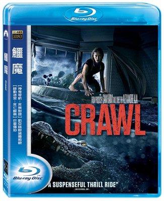 (全新未拆封)鱷魔 Crawl 藍光BD(得利公司貨)