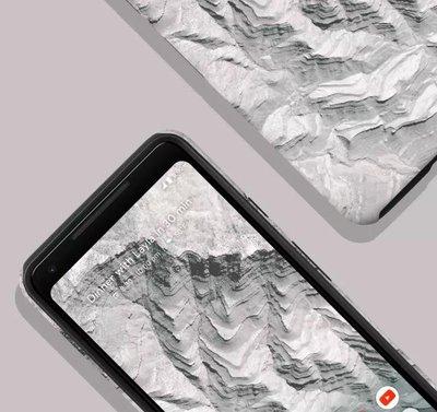 """岩石灰※台北快貨※Google Earth Live保護殼Pixel 2 二代5""""專用,支援Active Edge"""