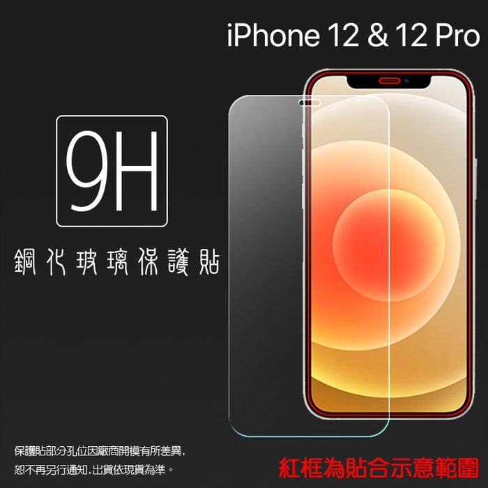 Apple 蘋果 iPhone 12 A2403/12 Pro A2407 6.1吋 鋼化玻璃保護貼 9H 鋼貼 保護膜