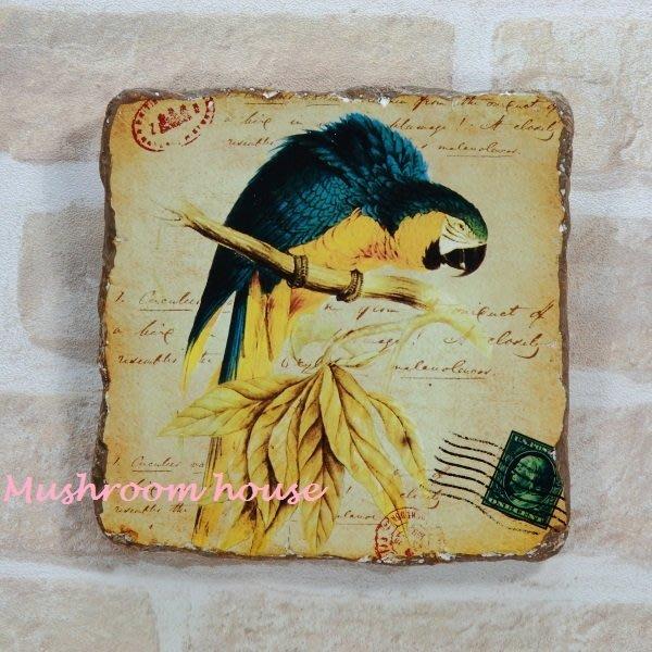 點點蘑菇屋{岩磚畫璧飾}藍黃鸚鵡石膏畫 彩色鸚鵡 復古掛飾 里約 鄉村雜貨 現貨
