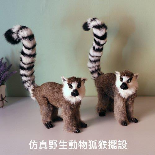 仿真野生動物狐猴擺設 居家餐廳動物道具桌面櫥窗拍攝道具_☆優夠好SoGood☆