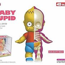 "全新現貨 4D Master Anatomy Cupid Baby 4"" Naughty Boy Mighty Jaxx XXRAY"