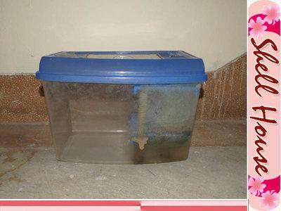 ☆貝殼的家☆水族箱\昆蟲箱\觀察箱