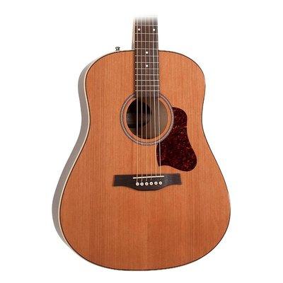【幫你買】Seagull Coastline Momentum HG聲電吉他自然 全新