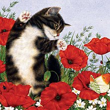 美國進口拼圖 sun 動物 貓.300片拼圖,20271