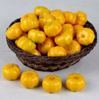 [MOLD-D058]仿真迷你小水果 假水果 蔬菜模型 攝影道具 仿真泡沫小南瓜10個