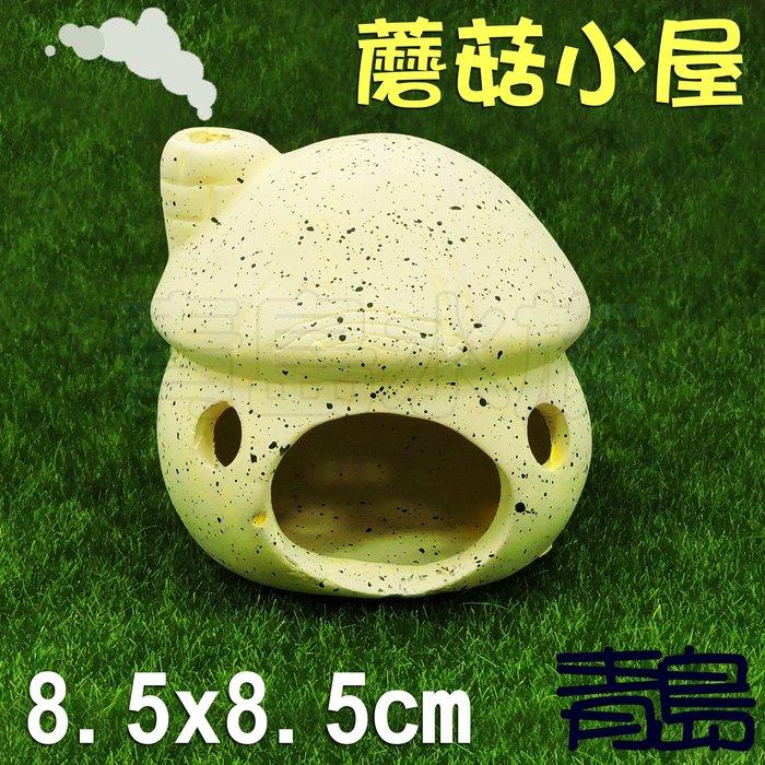 。。。青島水族。。。TW1207-Y陶瓷工坊-新型陶瓷躲藏甕 新型甕 水晶蝦 短鯛 魚蝦 繁殖裝飾造景==蘑菇小屋