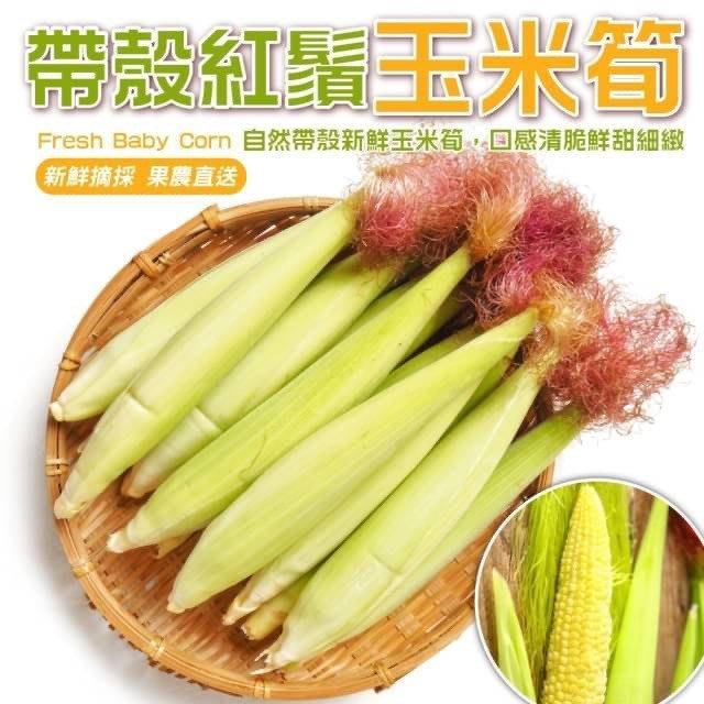 【果農直配-全省免運】台灣紅鬚帶殼玉米筍【5台斤±10%】