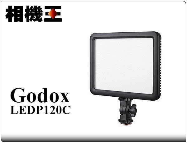 ☆相機王☆Godox LEDP 120C 平板型 攝影燈〔單燈版 不含電池、充電器〕#11673