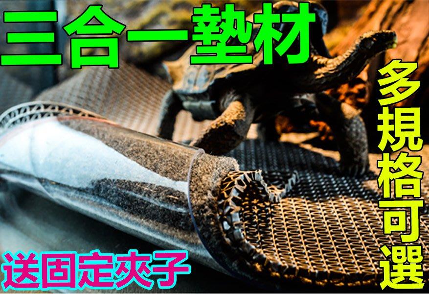 爬蟲爬寵三合一墊材120x60cm【六種規格可選 送固定夾子】 爬寵地毯 防水墊材 陸龜蜥蜴保溼地毯可參考《番屋》