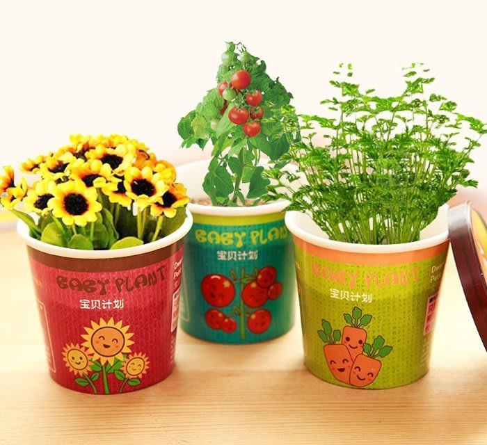 創意微景觀迷你可愛盆栽 / 辦公室桌面生態果蔬植物種子$39