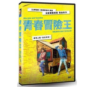 合友唱片 面交 自取 青春冒險王 (DVD) Microbe & Gasoline DVD