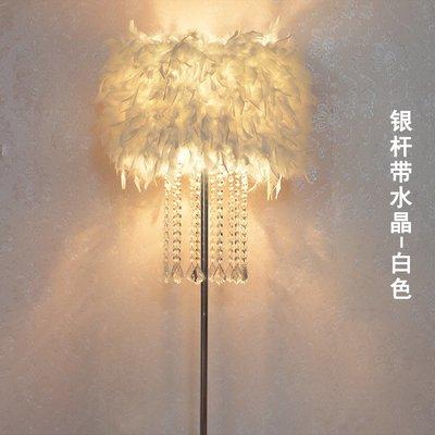 燈飾 照明 落地燈 補光燈 家具北歐INS創意水晶羽毛落地燈客廳公主臥室床頭臺燈婚慶主播補光燈