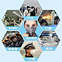 【3M】9913活性碳口罩- 紐澳認證 GP1活性碳口罩(15只盒)  飛沫 沙塵暴 霧霾1盒/15入