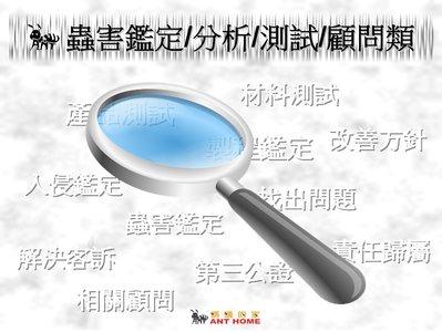 【螞蟻的家】蟲害鑑定  / 責任歸屬 / 無毒防治 / 顧問服務 / 裝潢蛀蟲 / 藥劑測試