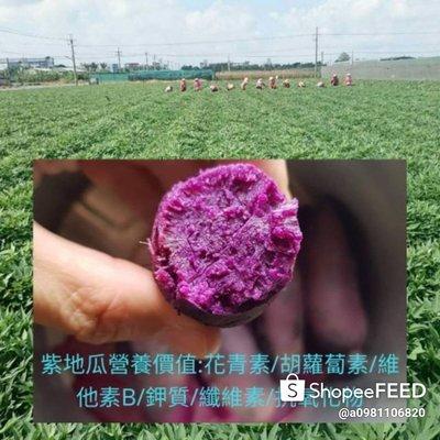 台農57號地瓜中顆5斤+紫地瓜中顆5斤+含運費只賣550元 (雲林縣慧軒農場)