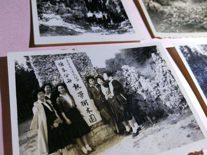 銘馨易拍重生網 PSS118 早期 50年代 美女學生們 在恆春林試所樹木園前背景寫實照 如圖(4張ㄧ標,珍藏回憶)讓藏