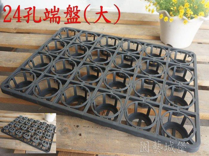 【園藝城堡】24孔端盤(大) 適用2.5~3吋黑軟盆 栽培盆