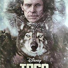 電影現貨《多哥 Togo》