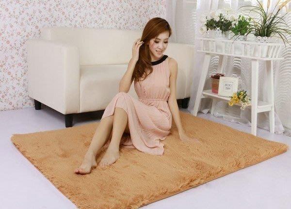 160*80cm 超細緻柔軟絲絨毯 防滑 柔軟 絲毛 乳膠 地墊 地毯 4.5cm加厚可水洗絨毛地毯