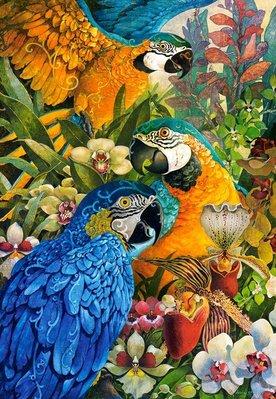 歐洲拼圖 CAS 鳥.鸚鵡 1000片拼圖,103485