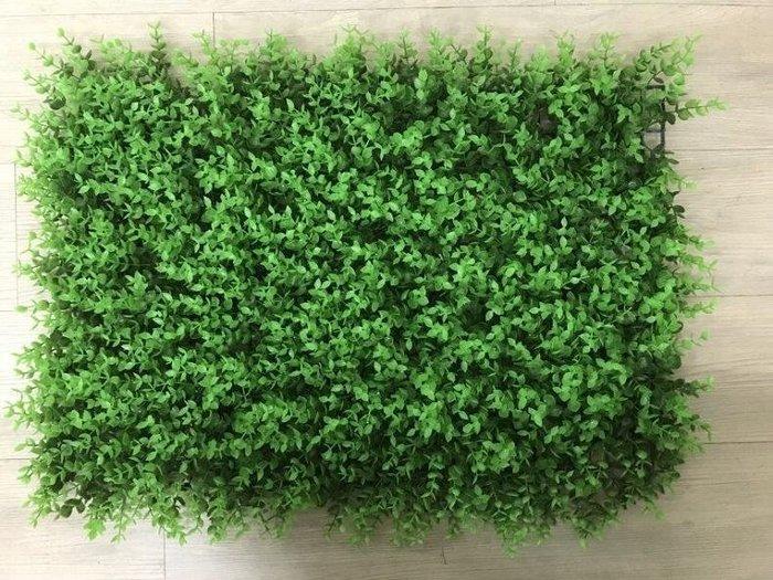 尤加利 60cm*40cm 花草牆  仿真植物牆 花草牆 背景牆 綠化景觀草 假草坪 人造草皮 人造花園 仿真植物