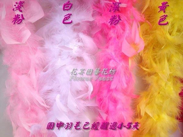 【花宴】*特價粗大羽毛條* 喜糖籃~花棒裝飾~ 簽名筆搭配~ 婚禮會場~ 舞蹈羽毛~