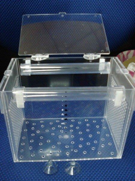 P。。。青島水族。。。CL-202台灣銓來---自浮式.浮力式隔離箱,繁殖箱,活餌箱(缸內式)==小型