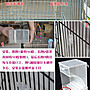 現貨!鸚鵡自動餵食器玄鳳虎皮牡丹金太陽八哥防濺防撒下料鳥食盒餵鳥器--廠家直售