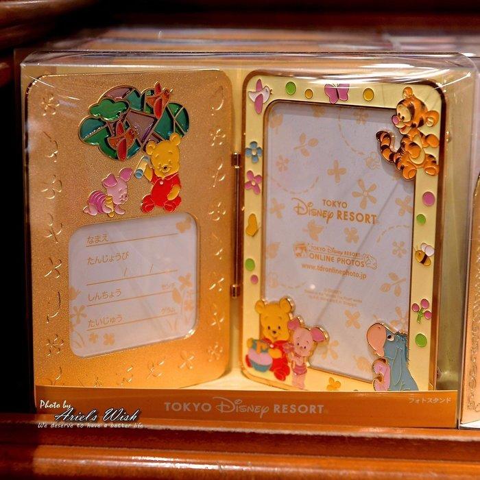 Ariel's Wish預購-日本東京迪士尼Disney小熊維尼WINNIE蜂蜜跳跳虎BABY版-黃色高質感立體金屬相框