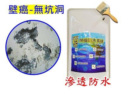 壁癌 DIY 水泥強化 壁癌封閉劑 滲透結晶 矽酸質 活性矽 紅磚牆 水泥滲透固化