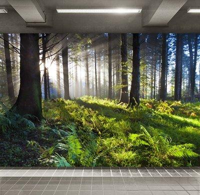 客製化壁貼 店面保障 編號F-708 森林美景 壁紙 牆貼 牆紙 壁畫 背景牆 星瑞 shing ruei