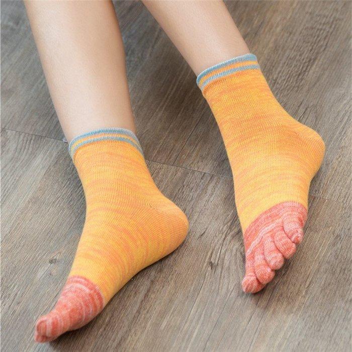 女士五指襪女棉襪女襪 四季棉腳趾襪中筒運動襪分趾襪