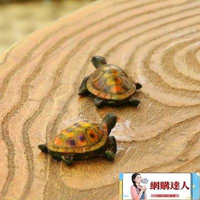仿真彩色小烏龜擺件 花園裝飾品樹脂雕塑...