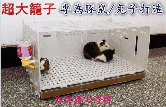 【凱迪豬生活館】亞克力豚鼠超大籠子兔子籠金絲熊抽屜別墅兔透明窩寵物籠KTZ-201003