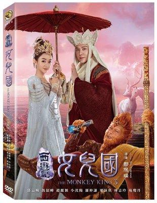 河馬音像~電影 西遊記女兒國 DVD 全新正版_起標價=直購價