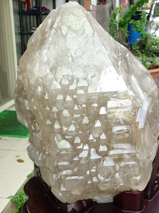 ~shalin-crystal~巴西鱷魚骨幹水晶~23.95公斤~完整度高~除穢聚氣~化煞聚財~低價起標!