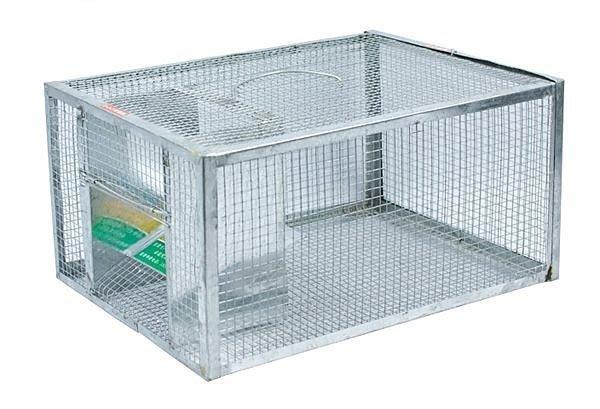 (大)易捕牌 長效連續性捕鼠器 捕鼠籠 老鼠籠 補鼠籠 滅鼠器;老鼠藥黏鼠板黏鼠紙;北投區
