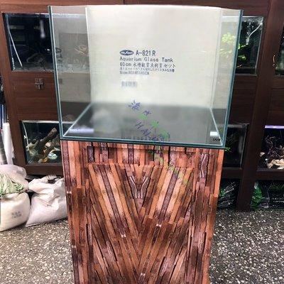 海威水族 ~ 台灣 Mr.Aqua 水族先生 • 2尺高透明度開放缸 • 60*45*45 招財缸 / H缸