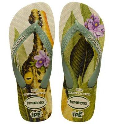 【巴西美鞋代購】2020款 Havaianas 哈瓦仕 男款 老鷹 鱷魚 食蟻獸 動物系列 夾腳拖鞋 沙灘拖 男鞋