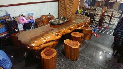 紅豆杉原木一體成形非組合 長288公分 寬76公分
