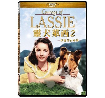 合友唱片 靈犬萊西2:戰火歷險記 伊麗莎白泰勒 DVD Courage of Lassie