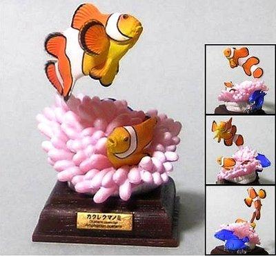海洋堂 Kitan 奇譚 Life In The Ocean 海洋生物 (珊瑚+小丑魚 特別版)