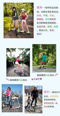 1 TIG系列 :啟思T1搖擺車/運動車/滑板車/蛙式滑板車/蛙式車/三輪滑板車//Air/腳踏車/龍行車/FLIKER