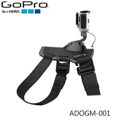 【MR3C】有問有便宜 含稅附發票【總代理公司貨】GoPro ADOGM-001 Fetch 寵物專屬頸帶