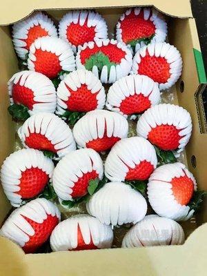 先詢問在下單-日本🇯🇵長崎草莓🍓原裝禮盒🎁(免運)
