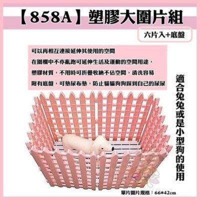 *白喵小舗*【含運】【858A】塑膠大圍片組 (六片入+底盤)/組 一組1680元