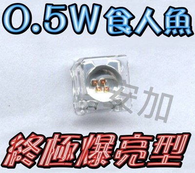 A4A41 終極爆亮0.5W 凸.平頭-食人魚LED 四晶片 CUXI.GT.RS 汽機車 小燈 100顆900元